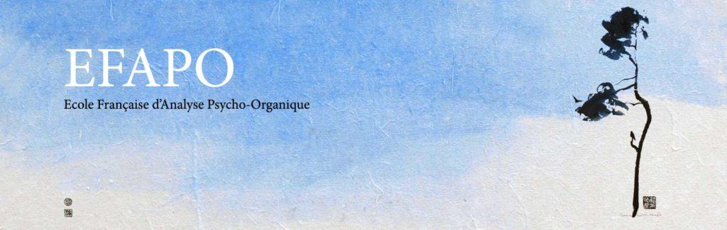 Logo EFAPO - Ecole Française d'Analyse Psycho-Organique